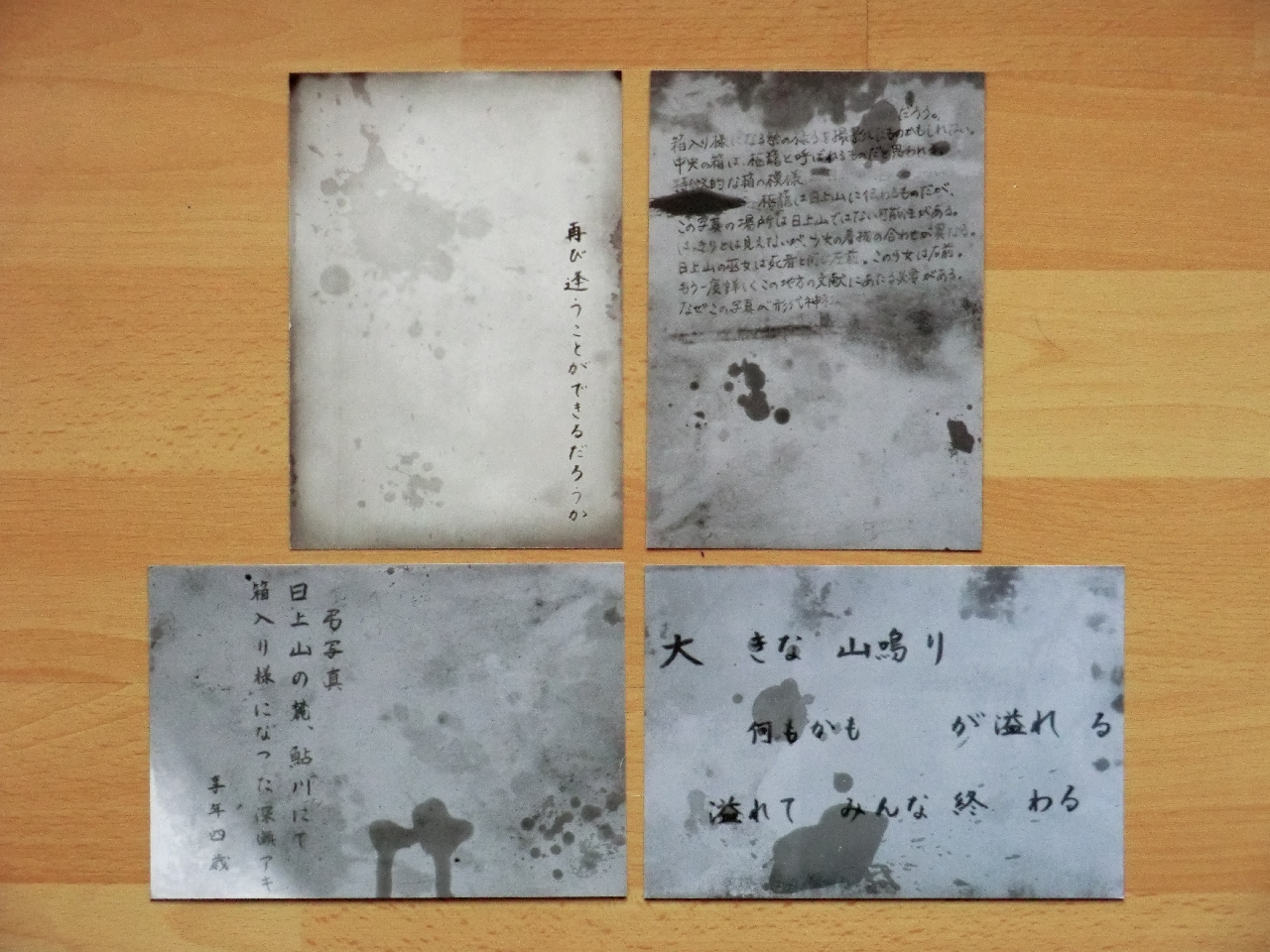 Project Zero Maiden of Black Water Wii U Survival Horror Fatal Frame Limited Edition Cards